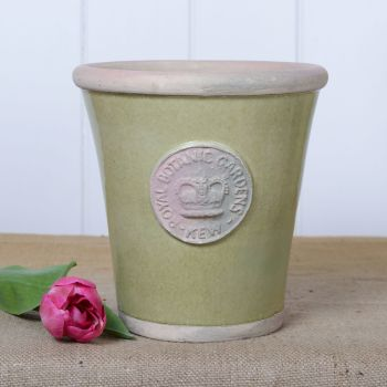 Kew Long Tom Pot in Grape Green - Royal Botanic Gardens Plant Pot - Medium
