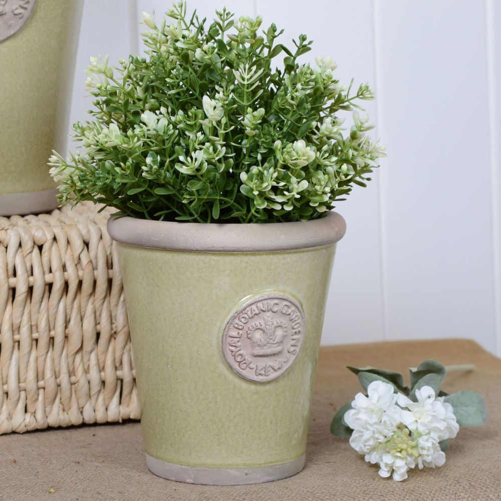 Kew Long Tom Pot in Grape Green - Royal Botanic Gardens Plant Pot - Small