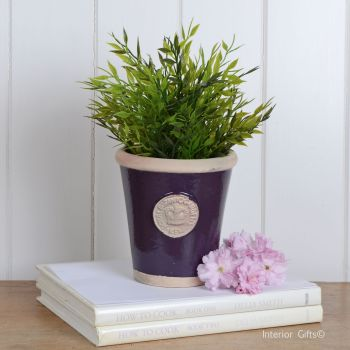 Kew Long Tom Pot in Aubergine - Royal Botanic Gardens Plant Pot - Small