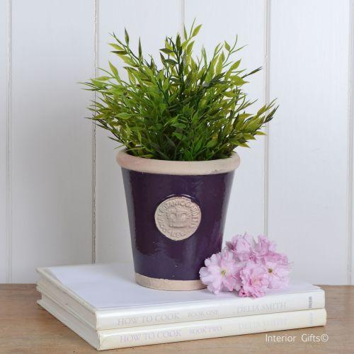 Kew Long Tom Pot in Aubergine - Royal Botanic Gardens Plant Pot - Small