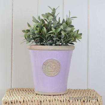 Kew Long Tom Pot Lavender - Royal Botanic Gardens Plant Pot - Medium