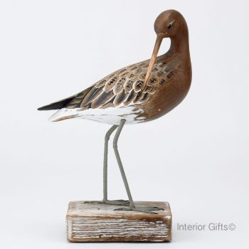 Archipelago Godwit Preening Bird Wood Carving