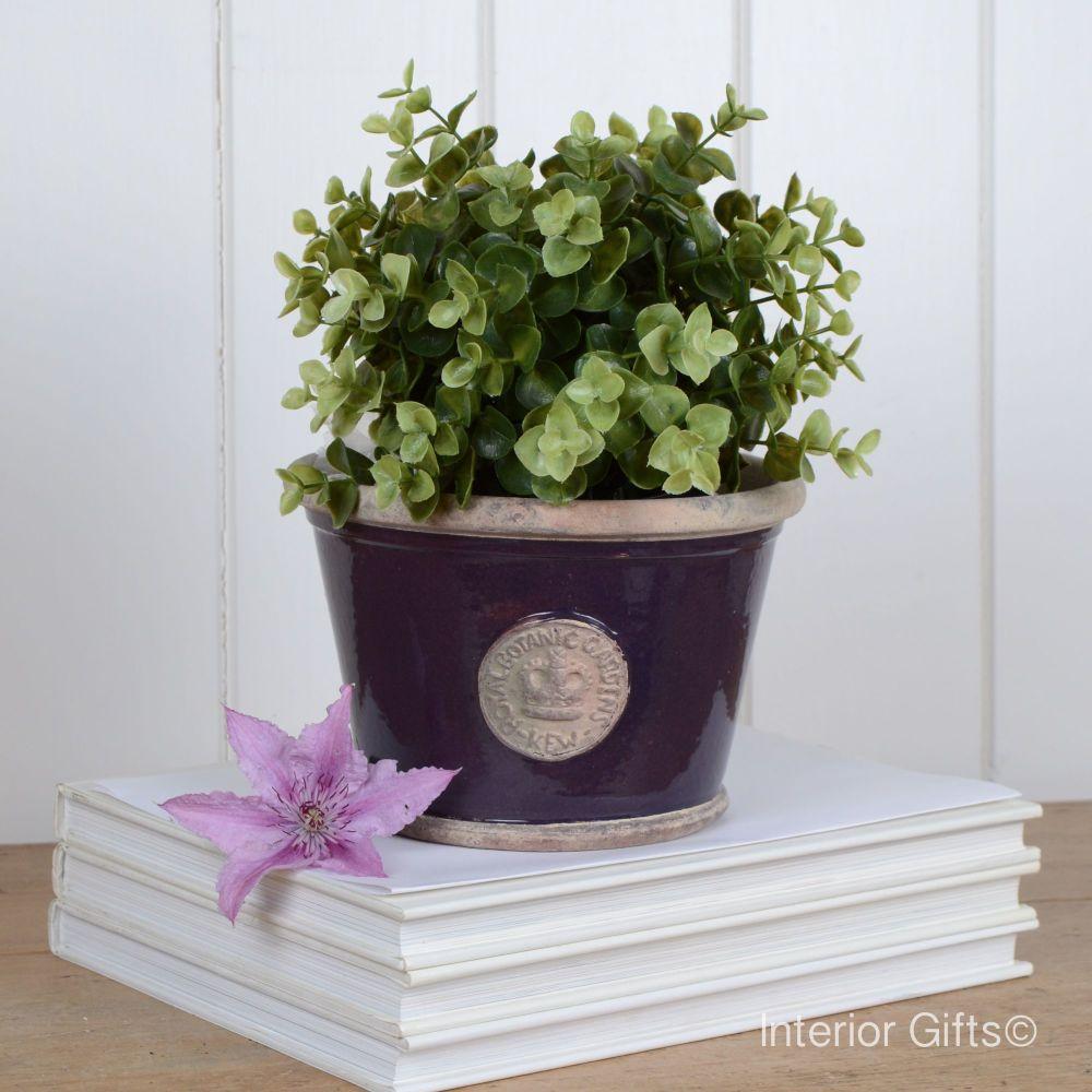 Kew Low Planter Pot Aubergine - Royal Botanic Gardens Plant Pot - Small