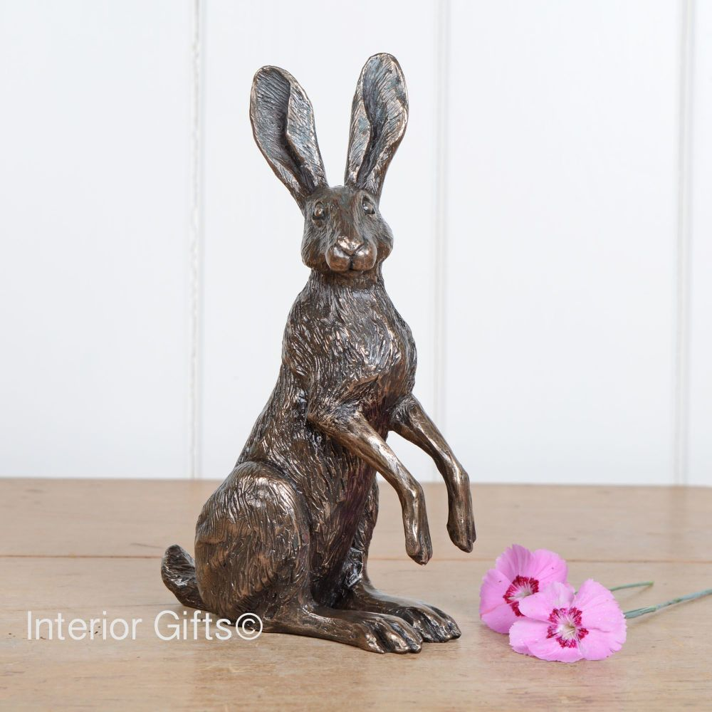 Curious Sitting Hare Bronze Sculpture by Harriet Glen
