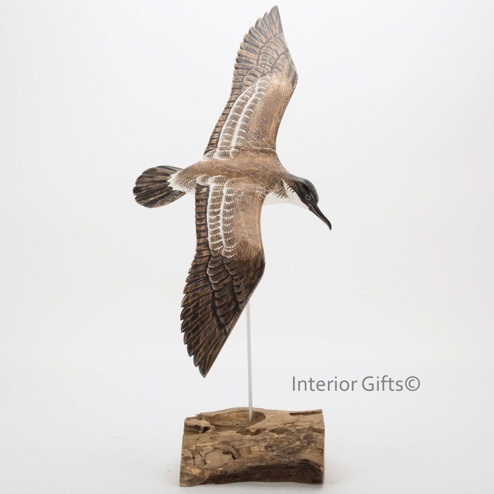 Archipelago Shearwater in Flight Bird Wood Carving