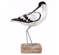 Archipelago Avocet Preening Bird Wood Carving
