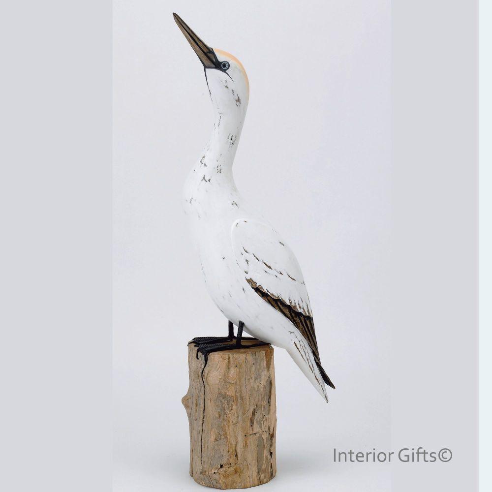 Archipelago 'Gannet Looking Up' Bird Wood Carving