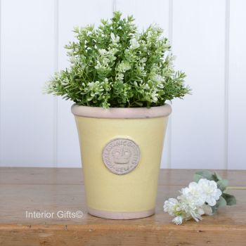 Kew Long Tom Pot in Citron Yellow - Royal Botanic Gardens Plant Pot - Small