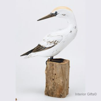 Archipelago 'Gannet Preening' Bird Wood Carving