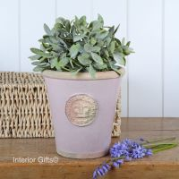 Kew Long Tom Pot in Powder Pink - Royal Botanic Gardens Plant Pot - Medium