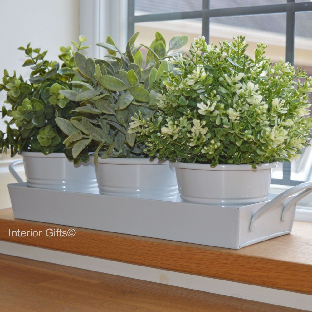 Zinc Herb Pot Set on Tray in Chalk White