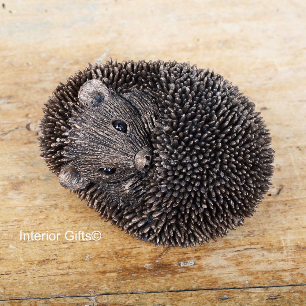 Frith Baby Sleeping Hedgehog Bronze Sculpture by Thomas Meadows