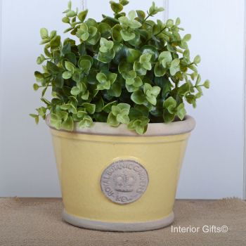Kew Low Planter Pot Citron Yellow - Royal Botanic Gardens Plant Pot - Small