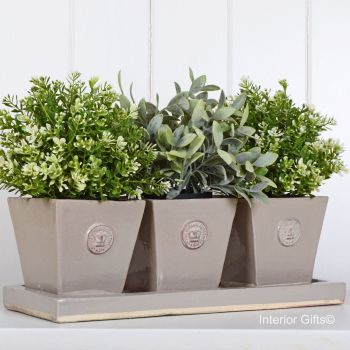 Kew Tapered Herb Pots & Tray - Set of Three - Royal Botanic Gardens - Almond Beige