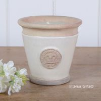 KEW Royal Botanic Gardens Candle in Ivory Cream - Small