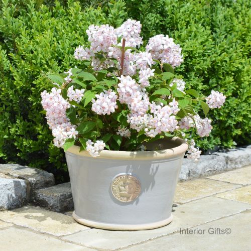 Kew Low Planter Pot Light Grey - Royal Botanic Gardens Plant Pot - Large