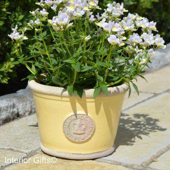 Kew Low Planter Pot Citron Yellow - Royal Botanic Gardens Plant Pot - Small