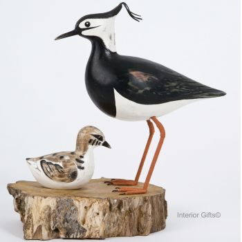 Archipelago Lapwing Block - Lapwing with Chick Bird Wood Carving
