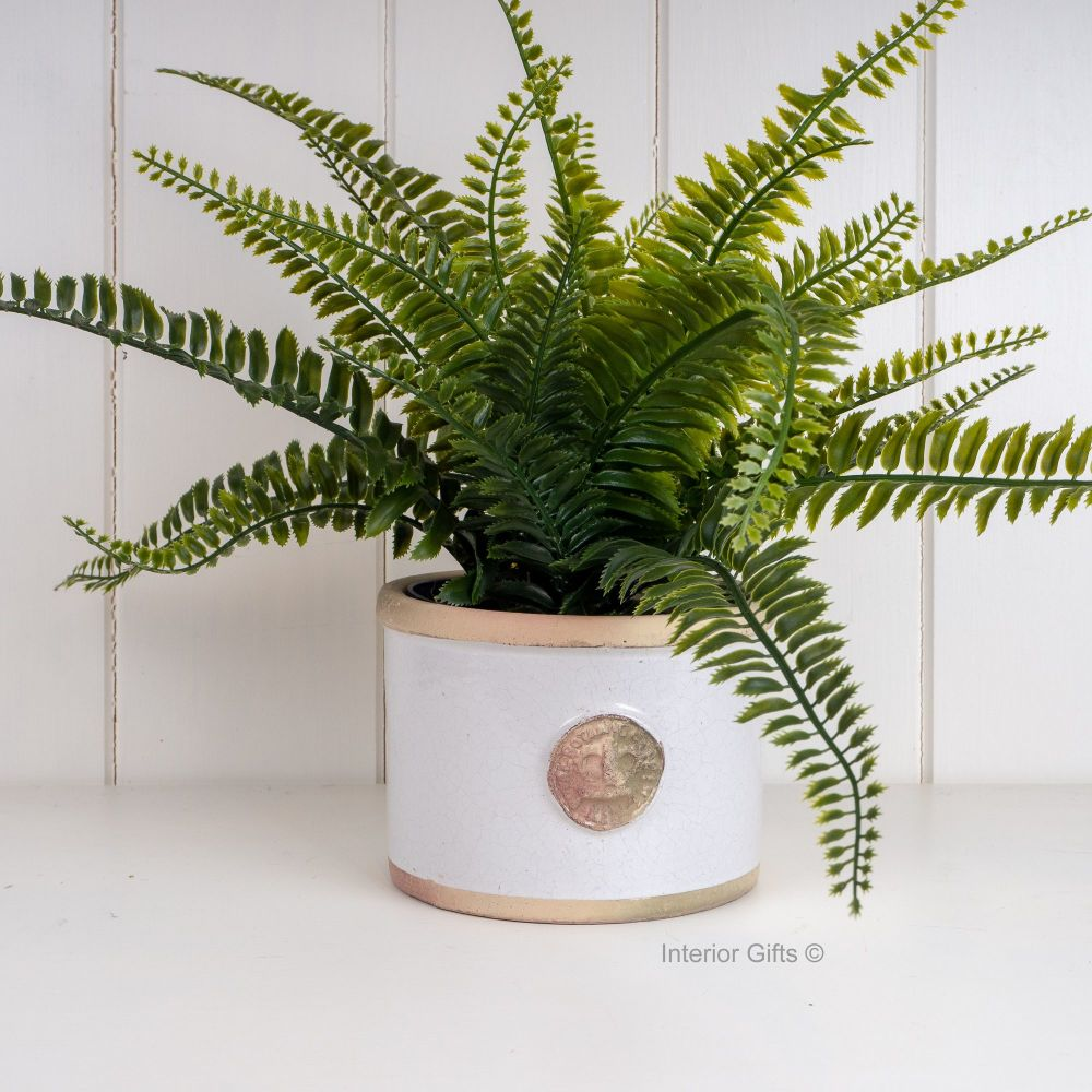 Kew Straight Edge Pot Bone - Royal Botanic Gardens Plant Pot - Small