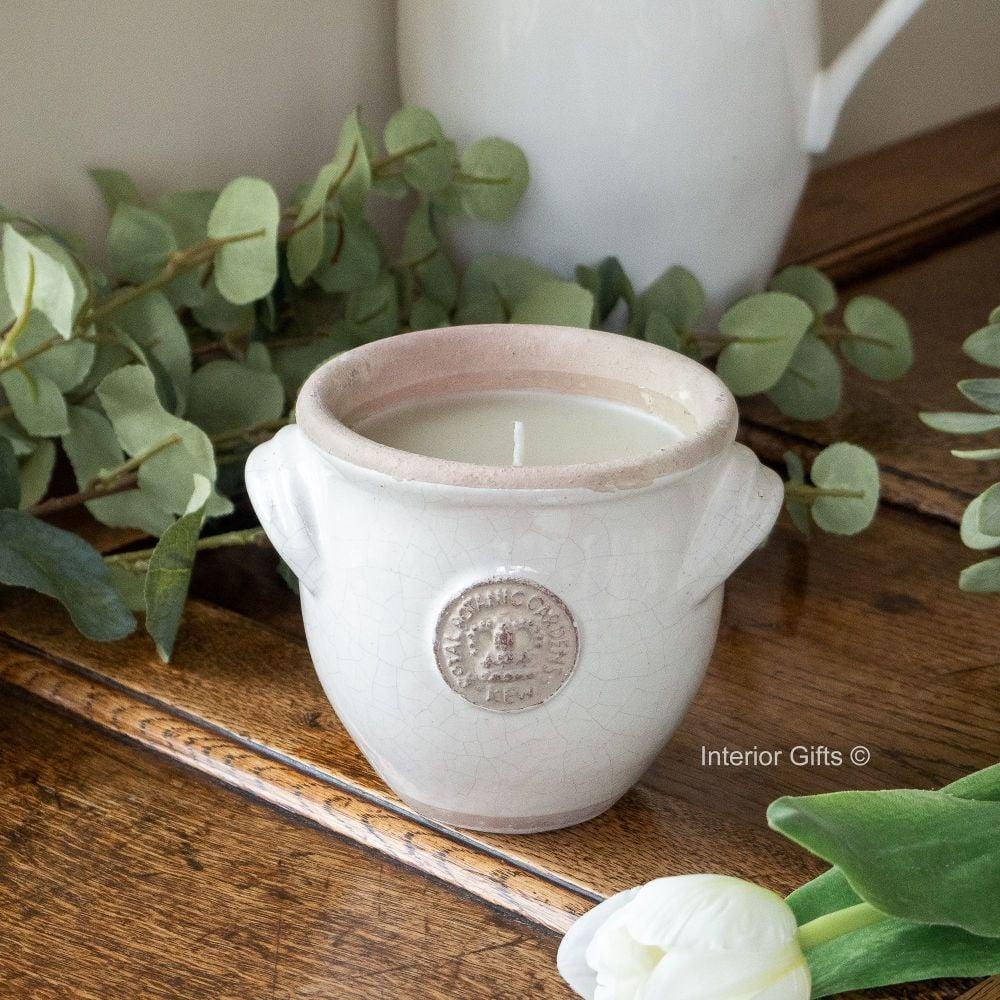 KEW Royal Botanic Gardens Provencal Candle in Bone