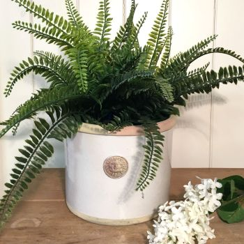Kew Straight Edge Pot Bone - Royal Botanic Gardens Plant Pot - Large