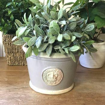 Kew Low Planter Pot Almond - Royal Botanic Gardens Plant Pot - Small