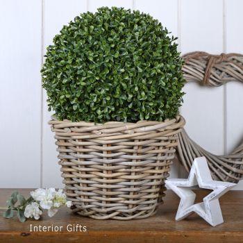 Wicker Basket Planter / Plant Pot  - Medium