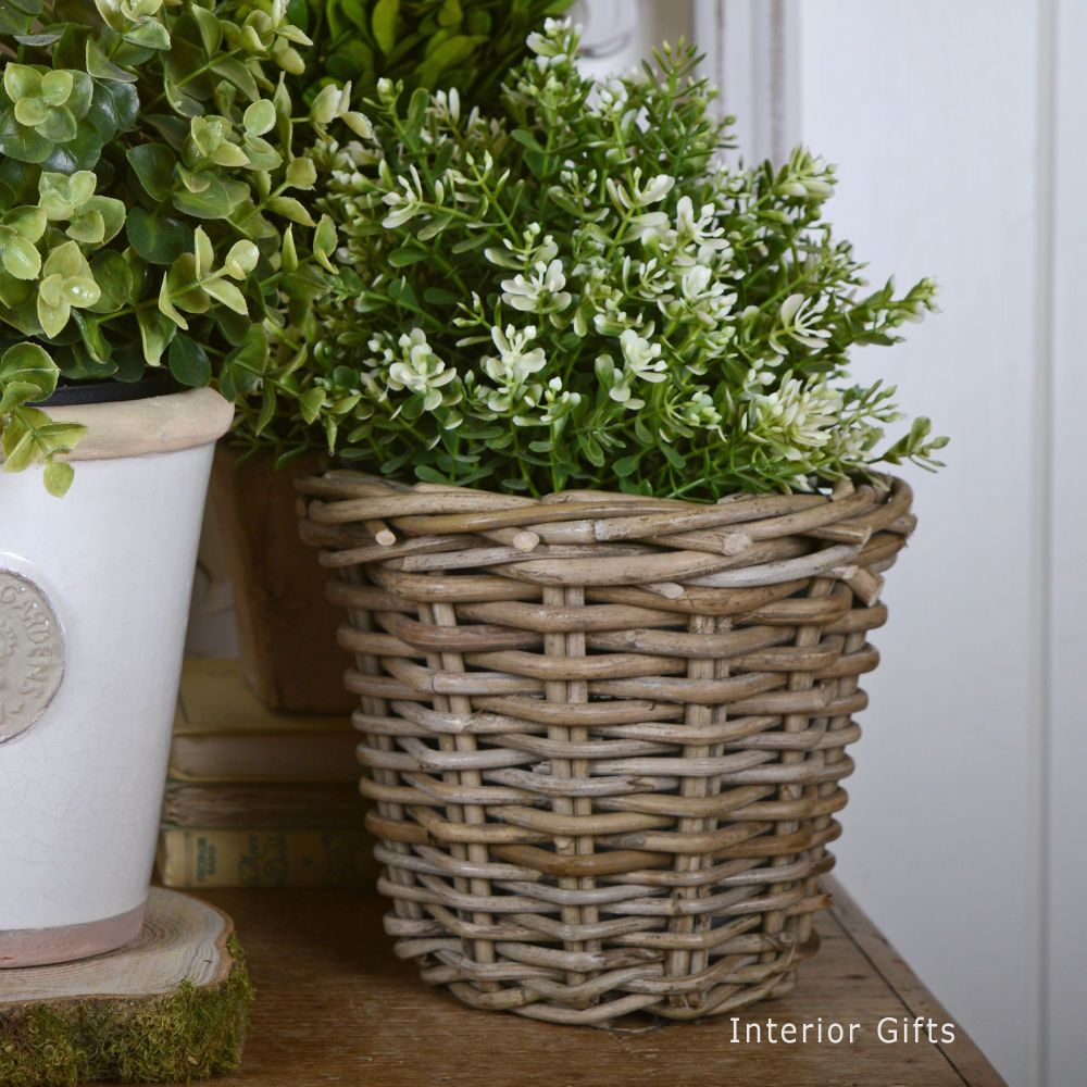 Wicker Basket Planter / Plant Pot  - Small