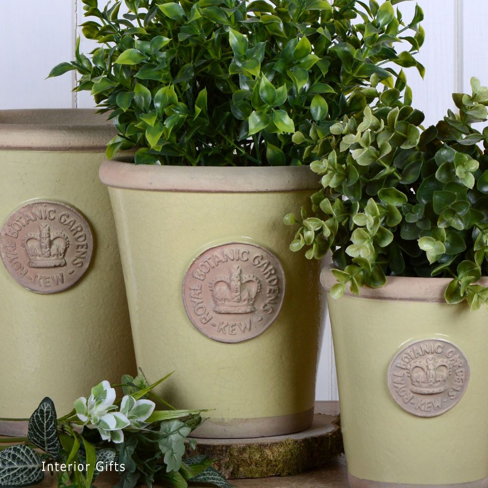 Kew Long Tom Pot in Churlish Green - Royal Botanic Gardens Plant Pot - Medi