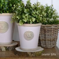 Kew Long Tom Pot in Calamine Pink - Royal Botanic Gardens Plant Pot - Small