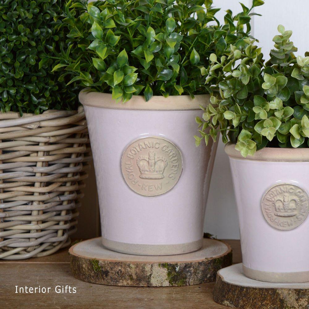 Kew Long Tom Pot in Calamine Pink - Royal Botanic Gardens Plant Pot - Mediu