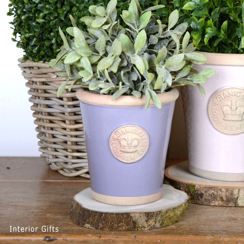 Kew Long Tom Pot in Brassica Lavender - Royal Botanic Gardens Plant Pot - S