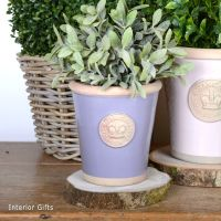 Kew Long Tom Pot in Brassica Lavender - Royal Botanic Gardens Plant Pot - Small