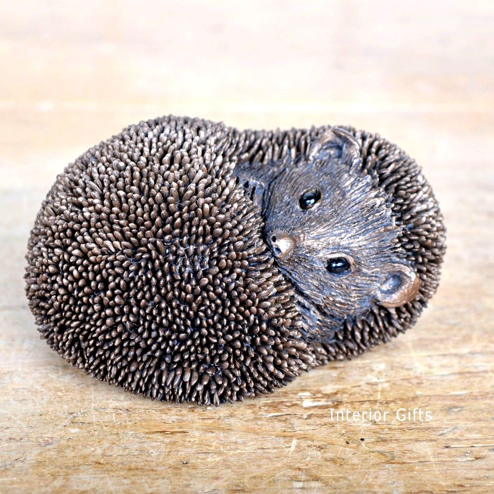 Frith Spike Resting Large Hedgehog Bronze Sculpture by Thomas Meadows