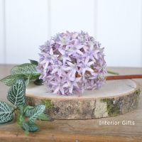 Allium Flower Heather Pink - 56 cm approx