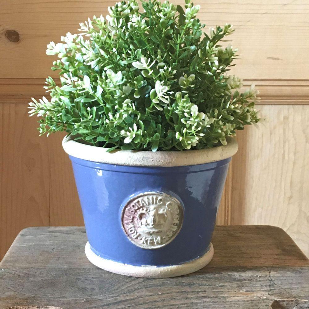 Kew Low Planter Pot Pitch Blue - Royal Botanic Gardens Plant Pot - Small