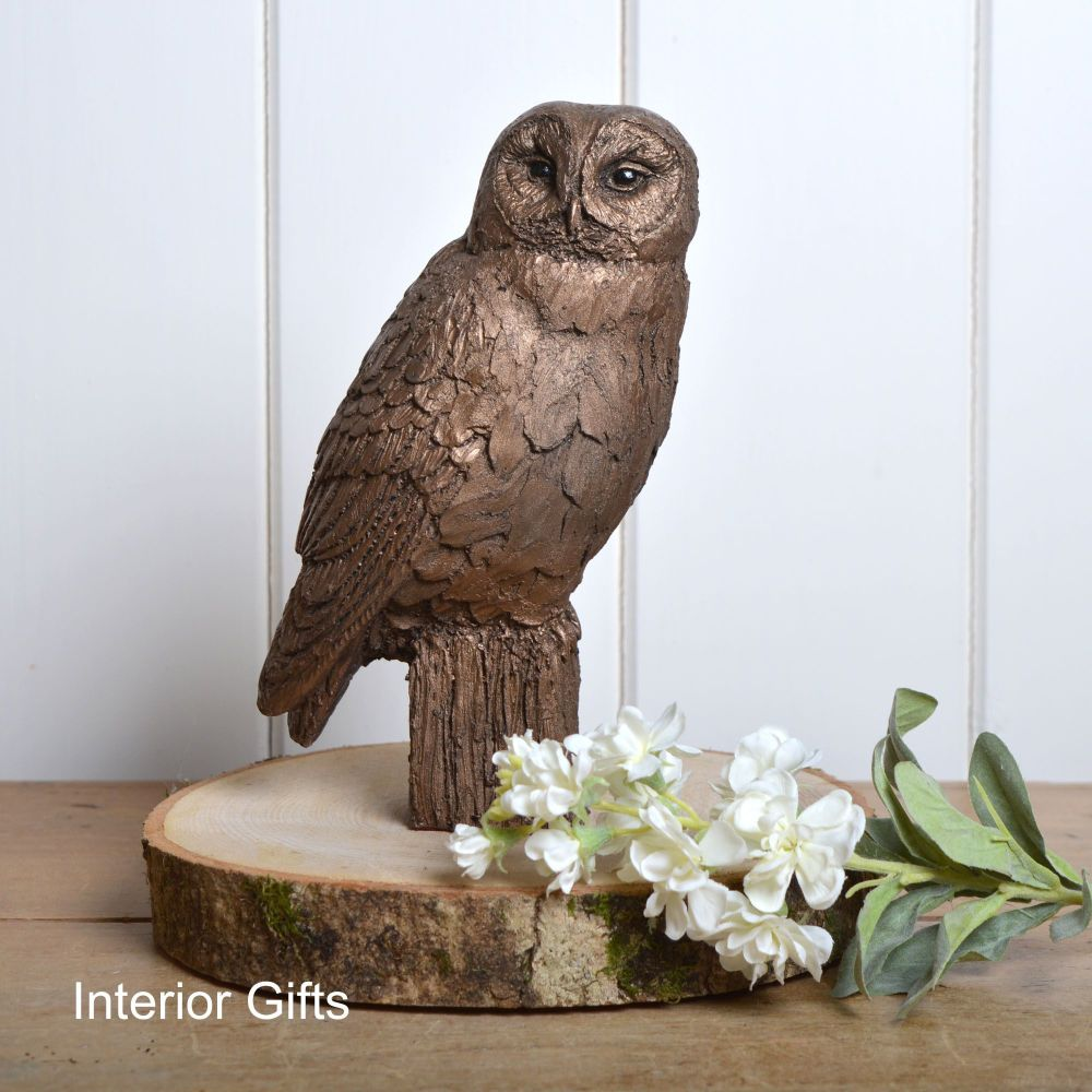 Tawny Owl Frith Bronze Sculpture by Harriet Dunn