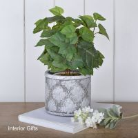 French Antique Grey Plant or Flower Pot - Medium 13 cm H