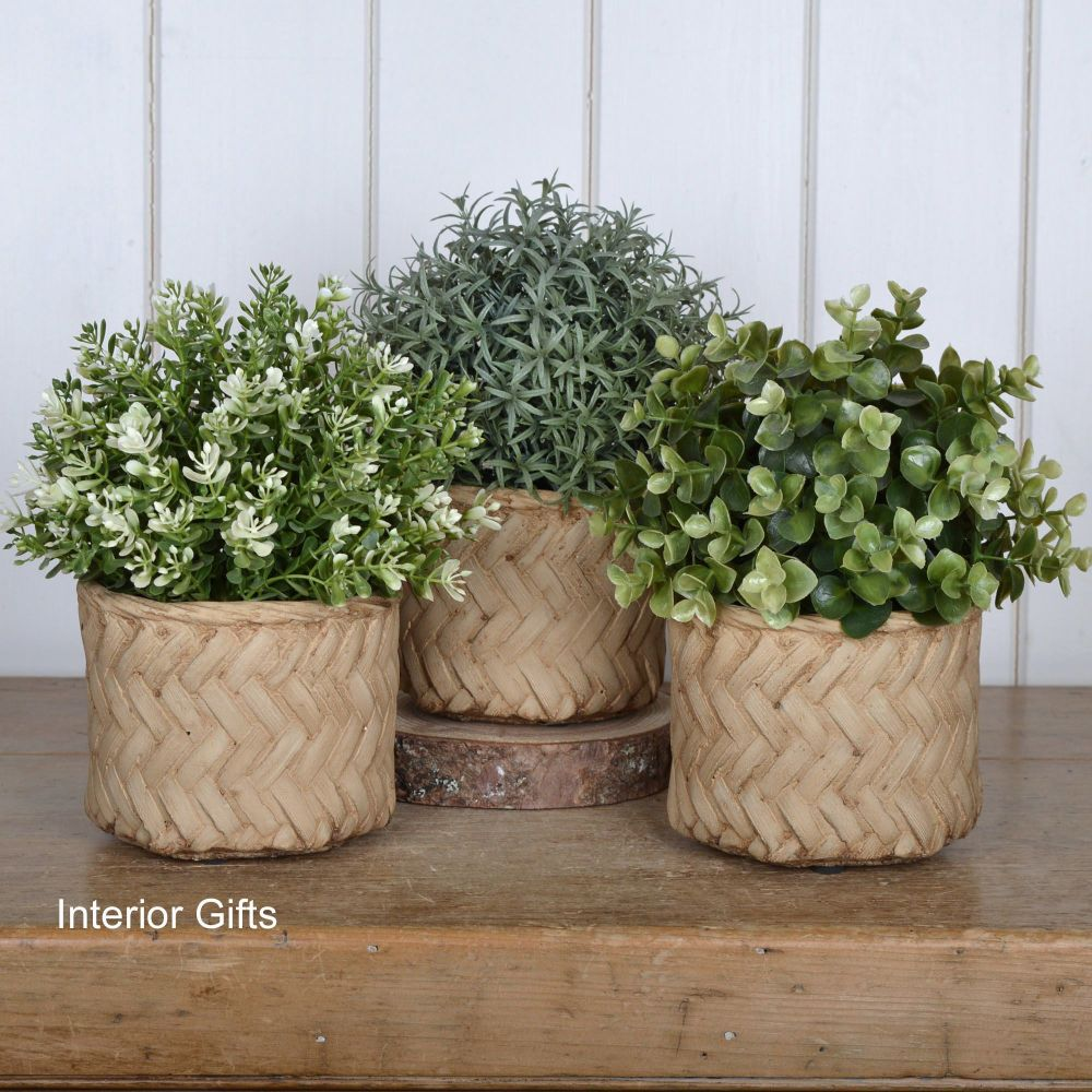 Pottery Lattice weave Plant, Herb or Flower Pots - Set of Three 11 cm