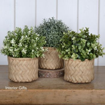 Pottery Lattice weave Plant, Herb or Flower Pots - Set of Three 11 cm H