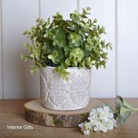 French Antique Cream Plant / Flower Pot - Small 11.5 cm H