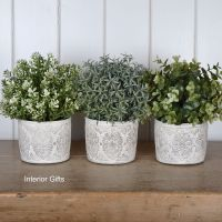 French Antique Cream Plant /Herb Pot - Set of 3 - X Small 9.5 cm H