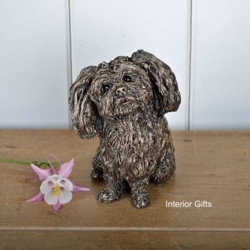 SPROUT - SHI TZU PUPPY DOG Sitting Frith Bronze Sculpture by Veronica Ballan