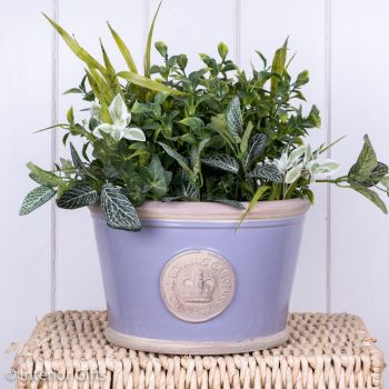 Kew Low Planter Pot Brassica Lavender - Royal Botanic Gardens Plant Pot - Medium