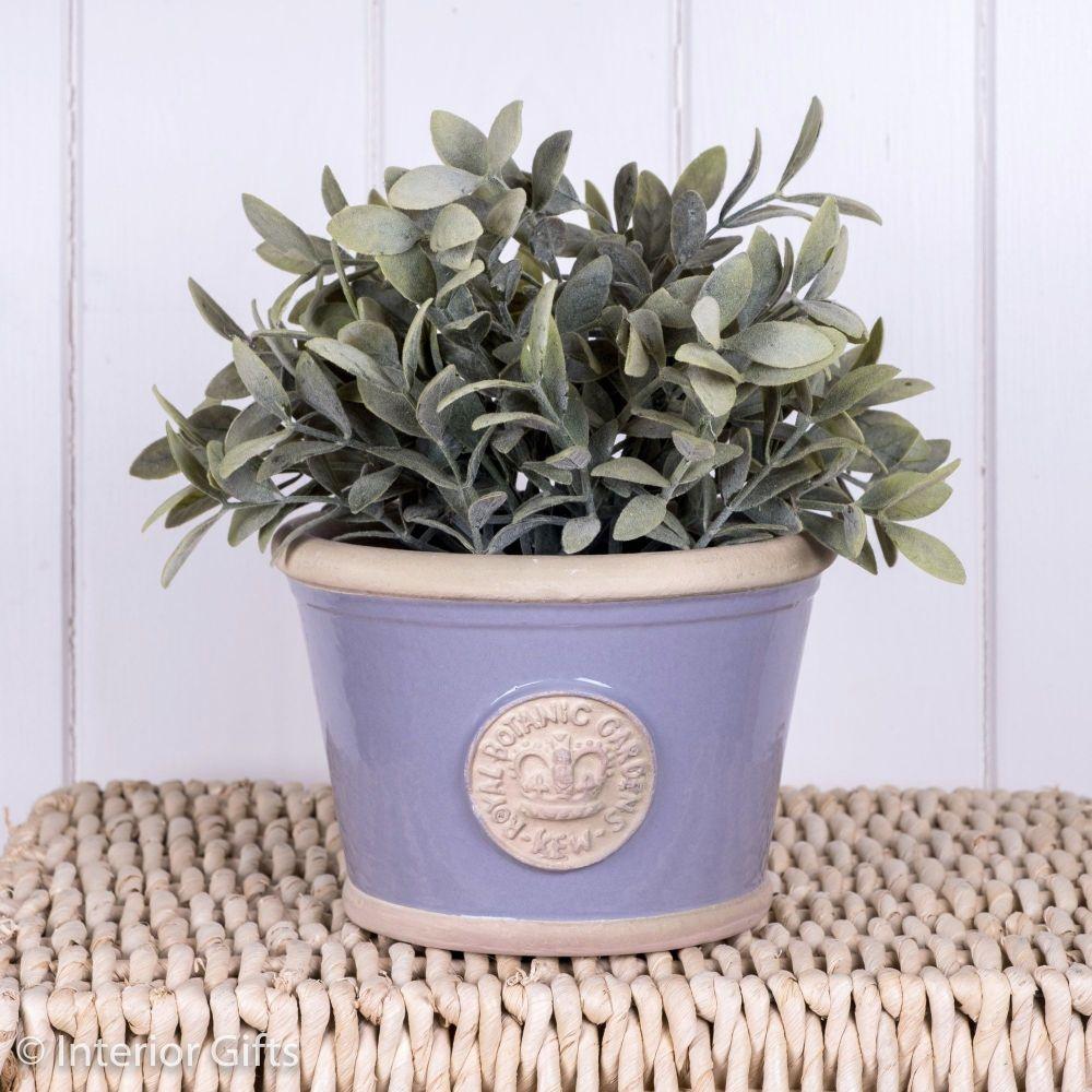 Kew Low Planter Pot Brassica Lavender - Royal Botanic Gardens Plant Pot - S
