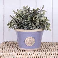 Kew Low Planter Pot Brassica Lavender - Royal Botanic Gardens Plant Pot - Small