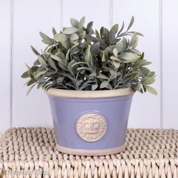 Kew Low Planter Pot Brassica Lavender - Royal Botanic Gardens Plant Pot - Small