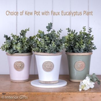 Kew Long Tom Pot in Small with Faux Eucalyptus Plant - Perfect Gift