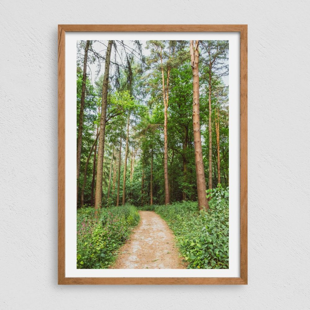 <!--002-->Framed Photography Prints