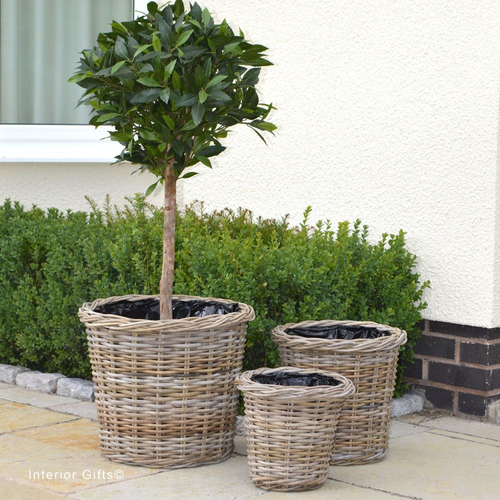 Rattan Wicker Basket Planter / Plant Pot  Round  - Natural
